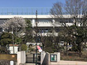 修了式の日の桜